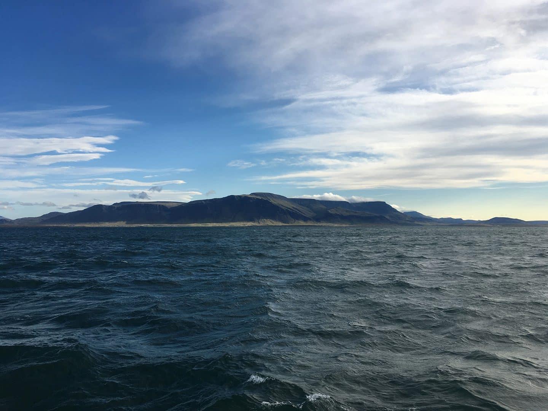 Whale Watching Tour, Reykjavik, Iceland