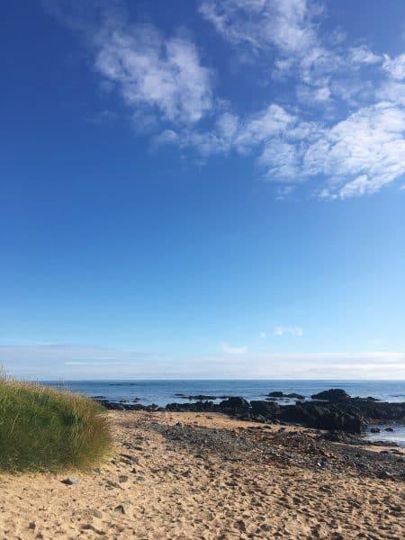 Ytri-Tunga Seal Beach, Iceland